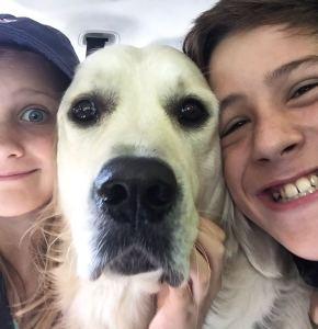 Tammy Shaws Shilo pup