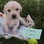 green-girl-4wk